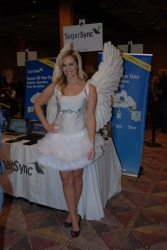 ces-2012-booth-babes-day1-03