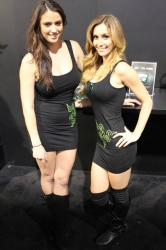 ces-booth-babes-2013-day1-015