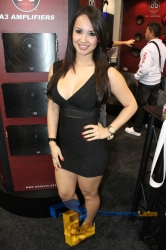 ces-booth-babes-2013-day2-011