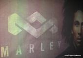 marley13_techwarelabs